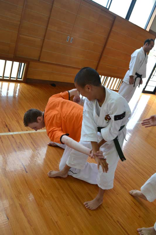 shorinji kenpo physical experience