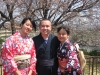 enjoying cherry blossoms in kimonos