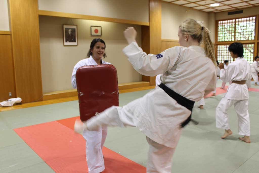 Karate experience
