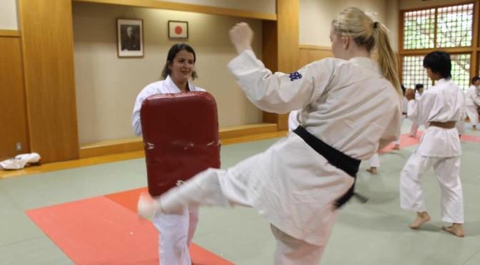 Karate experience